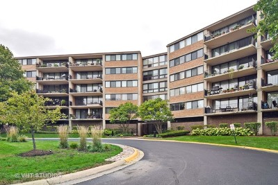 Schaumburg Condo/Townhouse For Sale: 101 Bar Harbour Road #3K