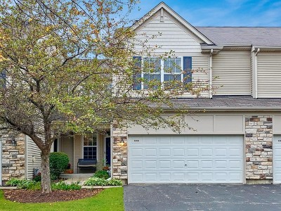 Grayslake Condo/Townhouse Contingent: 656 Shakespeare Drive