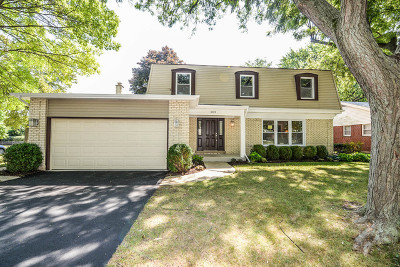Northbrook Single Family Home For Sale: 1021 White Mountain Drive