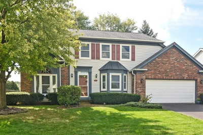 Schaumburg Single Family Home For Sale: 2417 Fabish Court