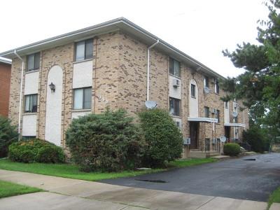 La Grange Multi Family Home For Sale: 319 Bluff Avenue