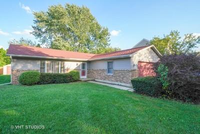 Aurora Single Family Home For Sale: 1061 Emerald Drive