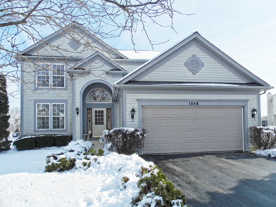 Elgin IL Single Family Home New: $295,000