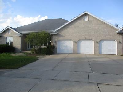 Frankfort Single Family Home For Sale: 8272 Parkview Lane