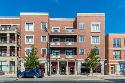 Condo/Townhouse For Sale: 1442 West Fullerton Avenue #3D