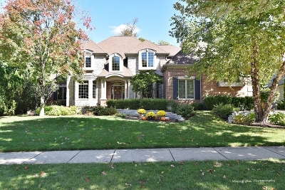 St. Charles Single Family Home New: 3021 Majestic Oaks Lane