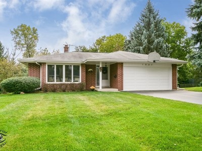 Downers Grove Single Family Home For Sale: 1237 59th Street