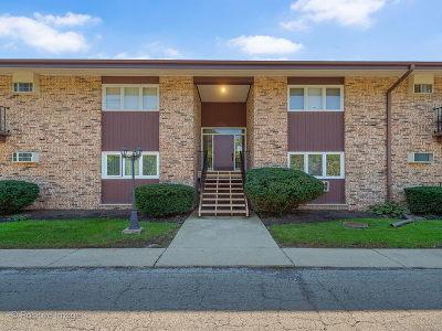 Glen Ellyn Condo/Townhouse New: 505 Kenilworth Avenue #8