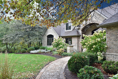 Kane County Single Family Home For Sale: 444 Courtney Circle