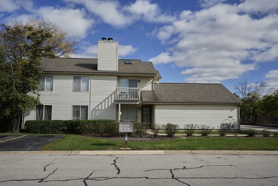 Arlington Heights Condo/Townhouse For Sale: 585 East Windgate Court #8A1