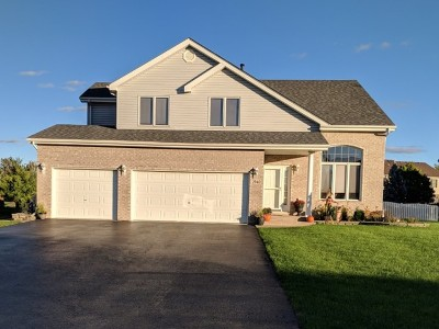 New Lenox Single Family Home For Sale: 2940 Royal Court