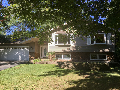 Grayslake Single Family Home For Sale: 32020 North Pine Avenue North