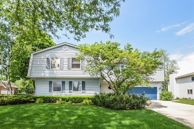 Hoffman Estates Single Family Home For Sale: 4141 Portage Lane