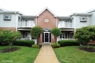 Naperville Condo/Townhouse New: 1226 Chalet Road #202