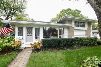 Arlington Heights Single Family Home For Sale: 131 North Waterman Avenue