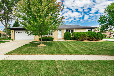 Schaumburg Single Family Home For Sale: 722 Groen Lane