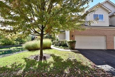 Aurora Condo/Townhouse For Sale: 441 Jamestown Court #441