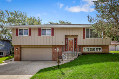 Schaumburg Single Family Home For Sale: 727 East Weathersfield Way