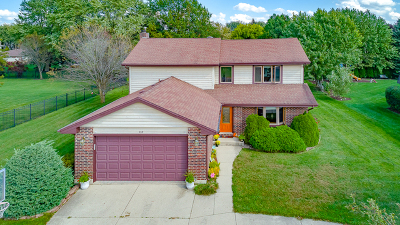 Bloomingdale Single Family Home For Sale: 269 Cardinal Drive