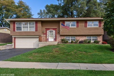 Arlington Heights Single Family Home For Sale: 702 West Burning Tree Lane