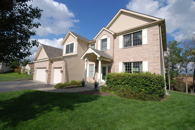 Antioch Single Family Home For Sale: 1119 Long Bay Court