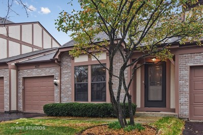 Hoffman Estates Condo/Townhouse For Sale: 4527 Olmstead Drive