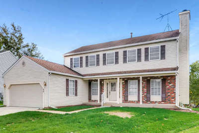 Streamwood Single Family Home For Sale: 45 North Walnut Court