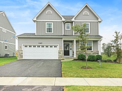 Plainfield Single Family Home New: 13617 Palmetto Drive