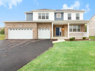 Plainfield Single Family Home New: 13513 Carmel Boulevard