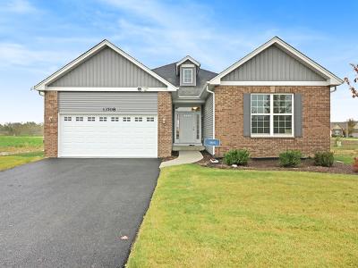 Plainfield Single Family Home New: 13708 Sanibel Street