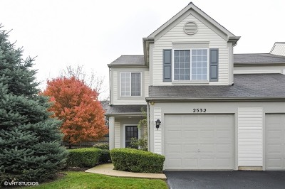 Naperville Rental For Rent: 2532 Carrolwood Road