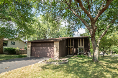 Palatine Single Family Home For Sale: 1392 North Oak Street