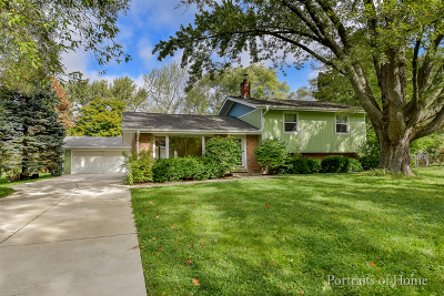 Lisle Single Family Home For Sale: 734 Rolling Drive