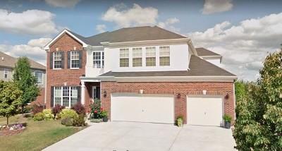 New Lenox Single Family Home For Sale: 222 Ian Avenue