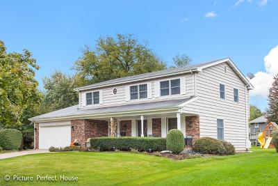 Naperville Single Family Home New: 1124 Elizabeth Avenue