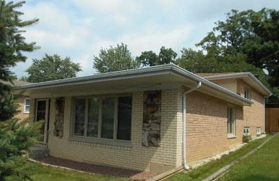 Lemont Single Family Home For Sale: 737 McCarthy Street