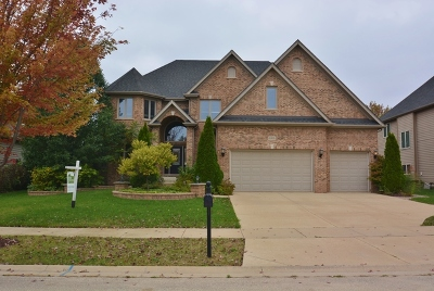 Plainfield Single Family Home For Sale: 11674 Liberty Lane