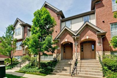 Mount Prospect Condo/Townhouse For Sale: 215 River Front Drive