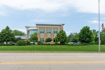 New Lenox Commercial For Sale: 400 East Lincoln Highway #1-1-1-1