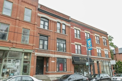 Cook County Multi Family Home New: 1021 West Webster Avenue