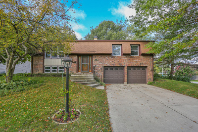 Hoffman Estates Single Family Home New: 4070 North Firestone Drive