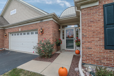 Bolingbrook Condo/Townhouse New: 1183 Patrick Henry Parkway