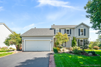 North Aurora Single Family Home For Sale: 361 Timber Oaks Drive
