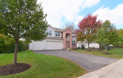Hoffman Estates Single Family Home For Sale: 5595 Brentwood Drive
