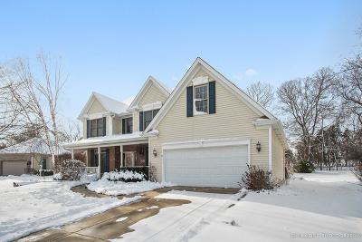 Sugar Grove Single Family Home New: 900 Elm Street