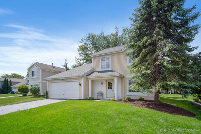 Aurora Single Family Home New: 1572 Golden Oaks Parkway