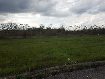 Mc Henry County Residential Lots & Land New: Lot 89 White Oaks Court