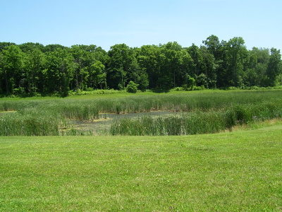 St. Charles Residential Lots & Land For Sale: Lot 4 Deer Pond Drive