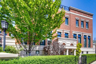 Cook County Condo/Townhouse New: 420 West Armitage Avenue