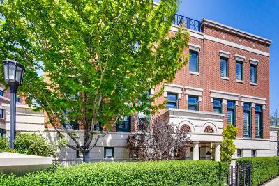 Condo/Townhouse New: 420 West Armitage Avenue